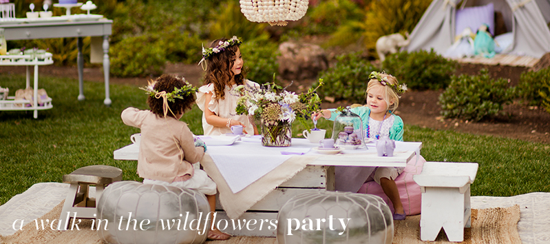 A Wallk in the Wildflowers Party