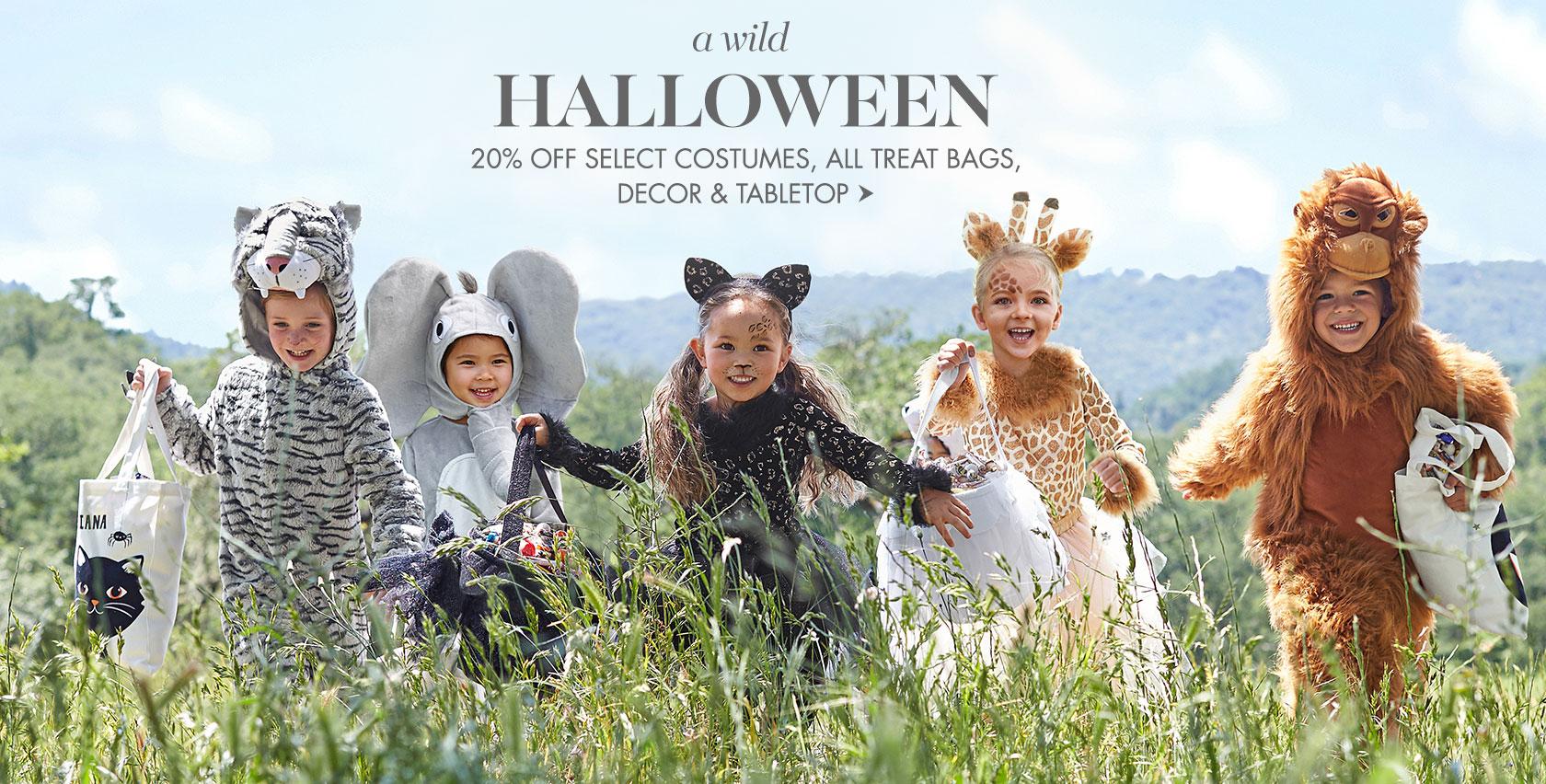 A Wild Halloween