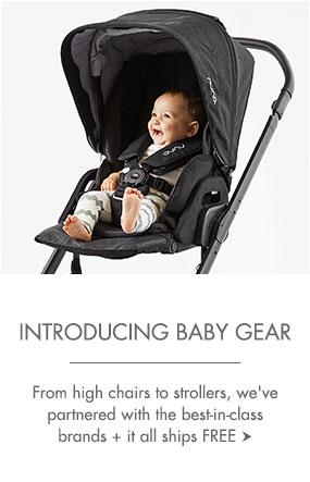 Introducing Baby Gear