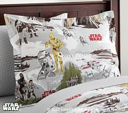 <em>Star Wars</em>&#8482; Return of the Jedi&#8482; Standard Sham