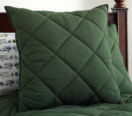 Dylan Euro Quilted Sham, Green
