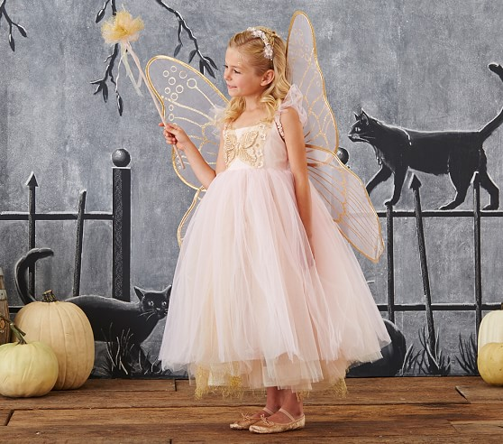 Butterfly Fairy Costume Pink Pottery Barn Kids