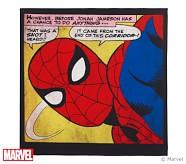 Stanton Spider-Man™ Pinboard