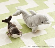 National Geographic Dolphin Plush, Small