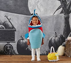 Halloween Decor Amp Costumes Pottery Barn Kids