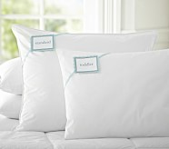 PBK Natural Down Blend Pillow Insert, Standard, 20 x 26""