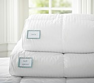 PBK Premium Down Comforter, Twin